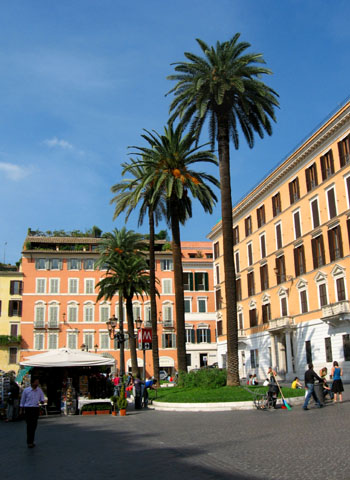 Rome: Palm trees near the Spanish Steps