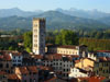 Lucca: View from the top of the Torre Guinigi
