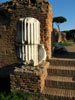 Rome: Fragments of a marble column on the Palatine