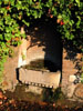 Rome: An overgrown niche somewhere on the Palatine