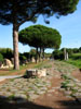 Ostia Antica: A medieval well stuck in the middle of an ancient Roman road, the Decumanus Maximus